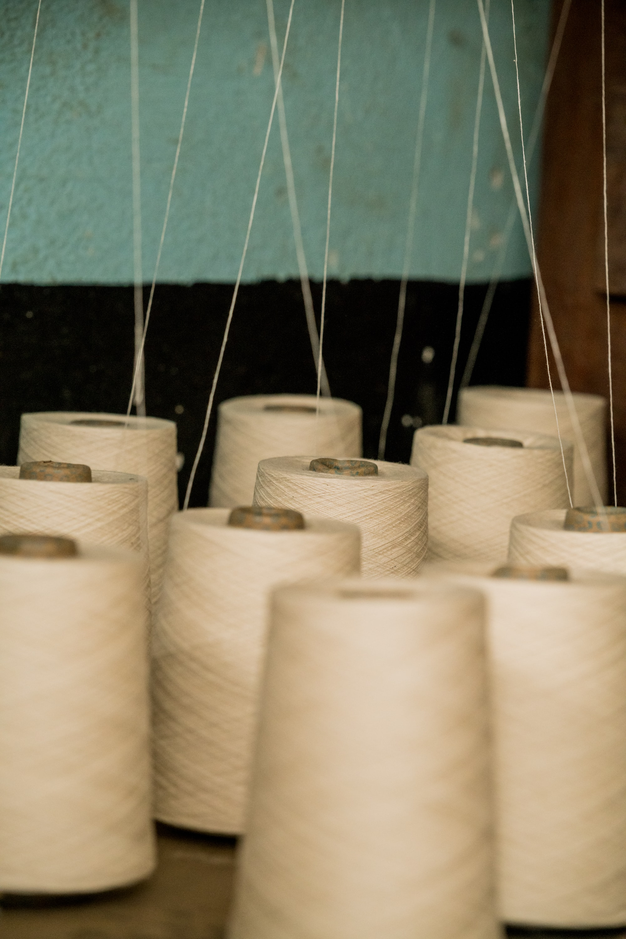 Photograph of multiple spools of thread.
